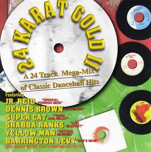 24 Karat Gold, Vol. 2: A 24 Track Mega-Mix of Classic Dancehall Hits by Various Artists
