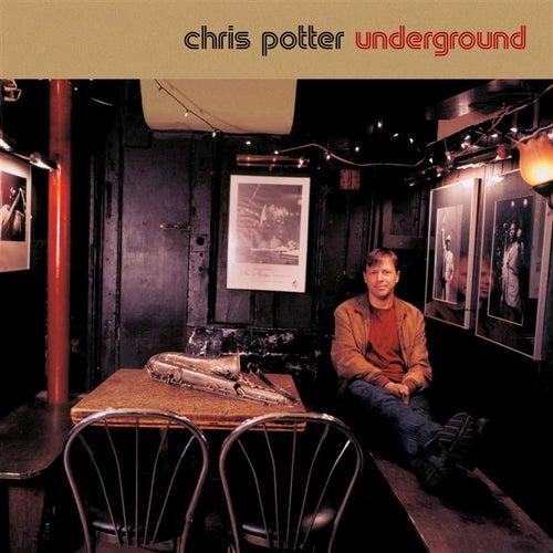Underground Quartet by Chris Potter