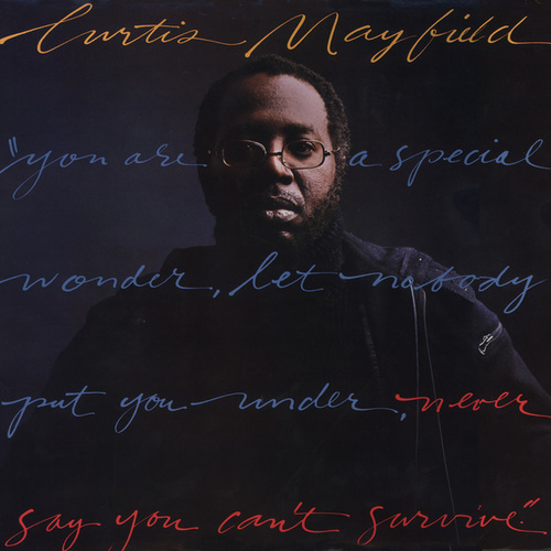 Never Say You Can't Survive by Curtis Mayfield