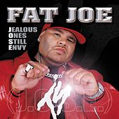 Crush Tonight von Fat Joe