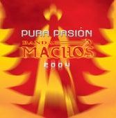 Pura pasión by Banda Machos