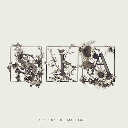 Colour The Small One by Sia