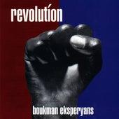 Revolution by Boukman Eksperyans