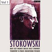 Leopold Stokowski,  Vol. 1 von Various Artists