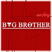 Bug Brother by SurfinG