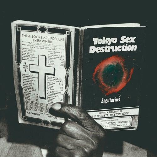 Sagittarius by Tokyo Sex Destruction