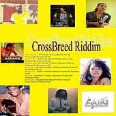 Cross Breed Riddim de Various Artists