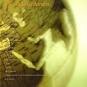 The Meta Collection by Various Artists