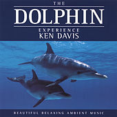 The Dolphin Experience by Ken Davis