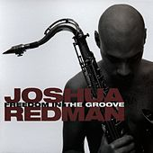 Freedom In The Groove by Joshua Redman