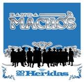 20 Mil Heridas by Banda Machos