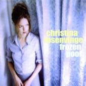 Frozen Pool by Christina Rosenvinge