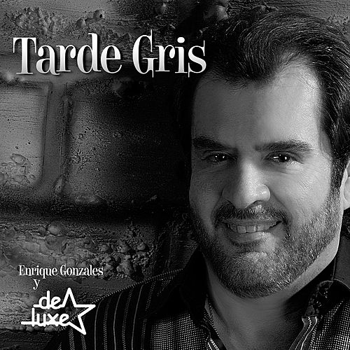Tarde Gris - Single by Enrique Gonzales y De Luxe