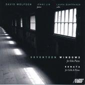 Seventeen Windows by Jenny Lin