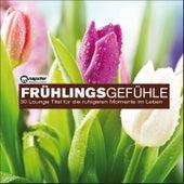Frühlingsgefühle...30 Lounge Titel für die ruhigen Momente im Leben de Various Artists