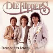 Freunde fürs Leben von Die Flippers