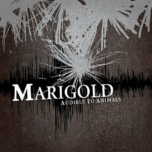 Audible To Animals by Marigold