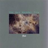 Flux by Ben Monder