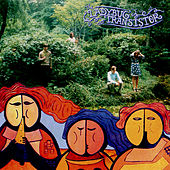 The Albemarle Sound by Ladybug Transistor