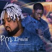 Dearest Christian by P.M. Dawn