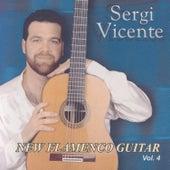 New Flamenco Guitar 4 by Sergi Vicente