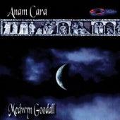 Anam Cara by Medwyn Goodall