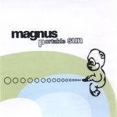 Portable Sun by Magnus