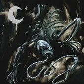 A Silhouette In Splinters de Leviathan