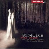 Sibelius: Tone Poems by Various Artists