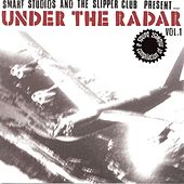 Under The Radar Vol. 1 by Various Artists