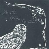 The Fall Album by Breathe Owl Breathe