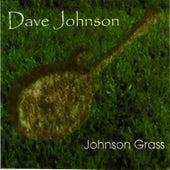 Johnson Grass by David Johnson