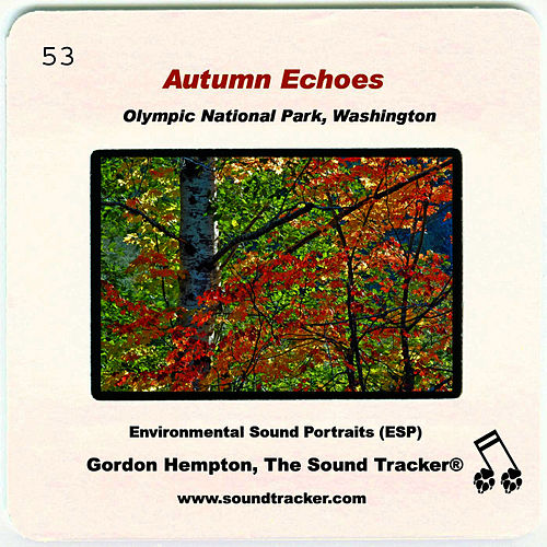 Autumn Echoes by Gordon Hempton