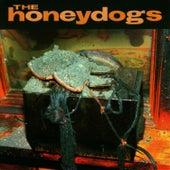 The Honeydogs di The Honeydogs