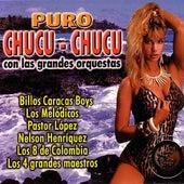 Puro Chucu-chucu de Various Artists
