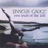 Finneus Gauge: One Inch Of The Fall de Echolyn
