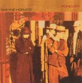 Forever by Wayne Horvitz