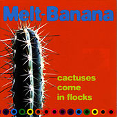 Cactuses Come In Flocks by Melt-Banana