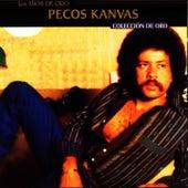 Colección De Oro by Pecos Kanvas