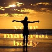 Your Material Body (lounge House Music) de Paduraru