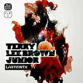 Labyrinth by Terry Lee Brown Jr.