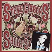Short Stories & Stained Glass by Steve Gibbons Band