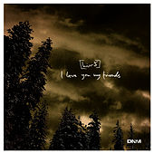 I Love You My Friends EP by Hird