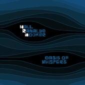 Oasis Of Whispers von Lee Ranaldo