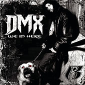 We In Here - 5 Pack by DMX