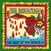 The Best Of Big Mountain de Big Mountain