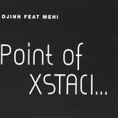 Point Of Xstaci by djinn