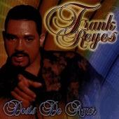 Doses De Amor by Frank Reyes