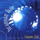 Hypnotic Drift by Brannan Lane