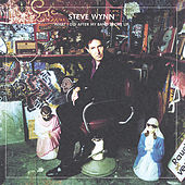 What I Did After My Band Broke Up/Visitation Rights (2CD) de Steve Wynn